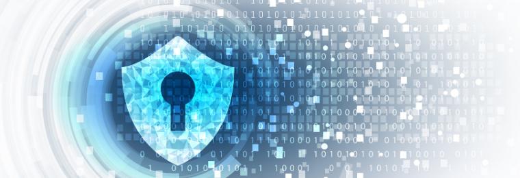 perito en ciberseguridad